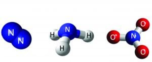 Nitrogen_Cycle_Compounds